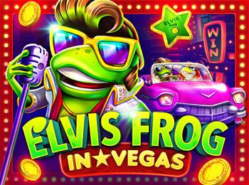 1 win elvis frog in vegas
