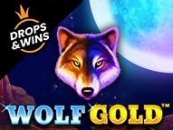 1win wolf gold slot