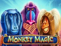 1вин отзывы Monkey Magic